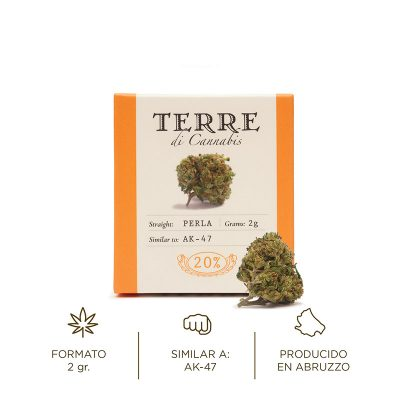 Perla flor aromática de cáñamo CBD Terre di Cannabis